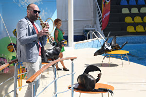 Saxophonist Sergei Golovnya performs at the Dolphinarium during the 16th Koktebel Jazz Party international music festival